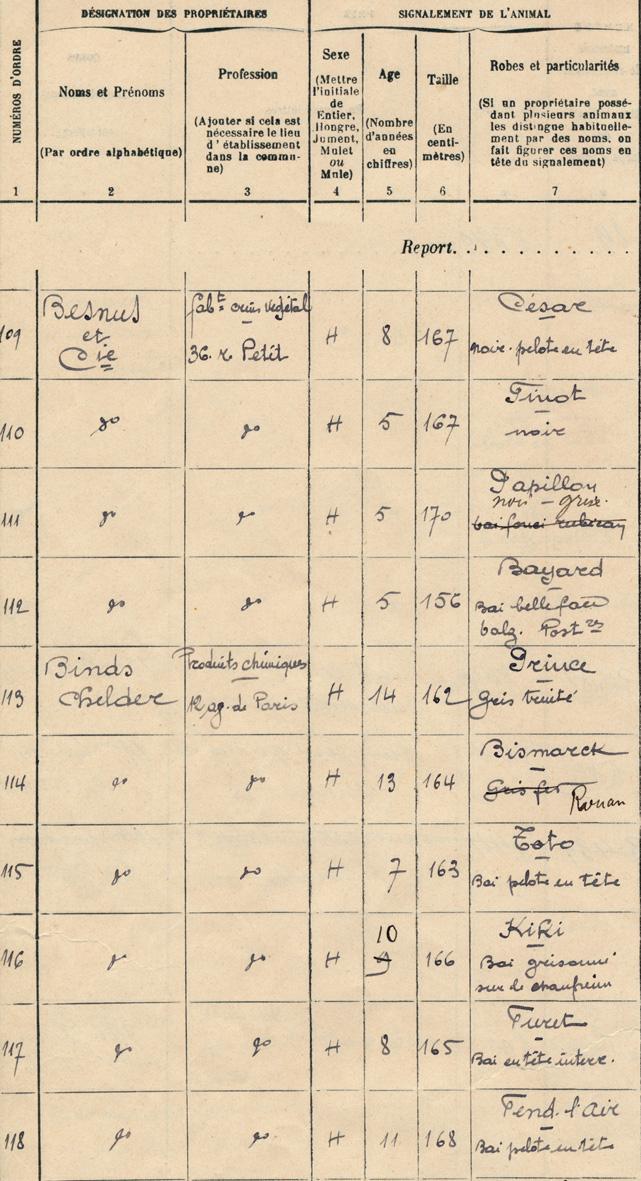 tableau de recensement des chevaux en 1914 à Saint-Denis